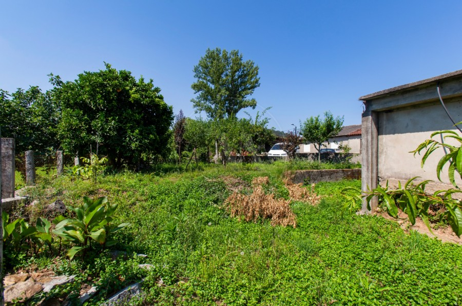 Quintal/Jardim (Imagem 4)